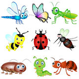 Vector Set of Insects. Vector Illustration set of six nine Insects Stock Images