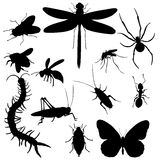 Vector Set of  Insects Silhouettes Royalty Free Stock Images