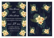 Vector set of invitation cards with  flowers elements Wedding co. Llection Stock Image