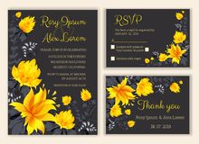Vector set of invitation cards with flowers elements Wedding col. Lection,RSVP,thankyou Royalty Free Stock Photography