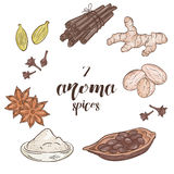 Vector set of 6 isolated cartoon hand drawn aroma Royalty Free Stock Image