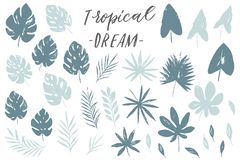 Vector set with isolated textured hand drawn leaves on white background. Vector tropical palm leaves, jungle, split leaf, philodendron, monstera. Jungle trees Royalty Free Stock Photo