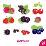 Vector set of juicy berries Royalty Free Stock Images