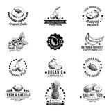 Vector set of labels, badges and hand drawn design Stock Images