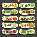 Vector Set labels with text for fresh Vegetables Stock Photos