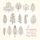 Vector set of leaves in cartoon style Stock Photography