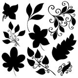 Vector Set of Leaves. Stencils Isolated Stock Image
