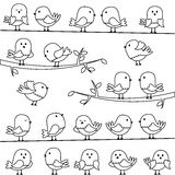 Vector Set of Line Art Cartoon Birds. And Branches Stock Photo