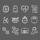 Vector set of line icons for personal trainer program. Royalty Free Stock Photos