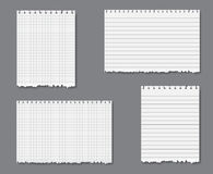 Vector set with lined and graph paper. Vector set with sheets of loose lined and graph leaf paper with torn lower edge stock illustration