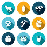 Vector Set of Milk Products Icons. Animal, Bottle, Cattle, Cheese making, Milking, Capacity, Packaging, Cheese, Sample. Stock Photos