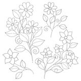 Vector Set of Monochrome Contour Simple Flowers, Floral Design Elements. Decorative Branches with Flowers with Leaves in Cute Style Royalty Free Stock Photos