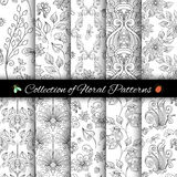 Vector Set of Monochrome Seamless Floral Patterns. Hand Drawn Floral Textures, Decorative Flowers and Insects Royalty Free Stock Photos