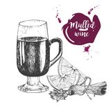 Vector set of mulled wine. Glass, cinnamon sticks, anise. Vintage engraved style. Decorated with blots. Stock Image