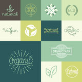 Vector set of natural, organic, vegan badges Royalty Free Stock Images