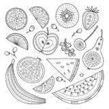 Vector set of nutrient-rich raw fruits in boho style. Vector illustration of nutrient-rich fruits in tribal, zen doodle boho style. Can be printed and used as vector illustration