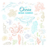 Vector set of ocean animals and plants. Royalty Free Stock Photo