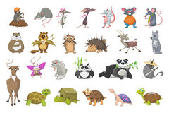 Vector Set Of Animals Illustrations. Royalty Free Stock Image