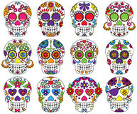 Vector Set Of Day Of The Dead Skulls Royalty Free Stock Image