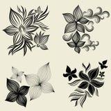 Vector Set Of Flower Design Elements Stock Images