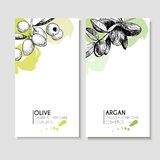 Vector Set Of Hair Care Ingredients. Organic Hand Drawn Elements. Flyers With Olive And Argan. Royalty Free Stock Photography