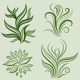 Vector Set Of Leafs Design Elements Stock Images