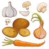 Vector set with onion, carrot, potatoes, garlic, mushrooms Stock Photo