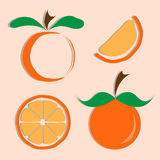 Vector set of orange icon Royalty Free Stock Photos