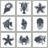 Vector Set of Ornate Sea Animals Icons with Long Shadow Stock Images