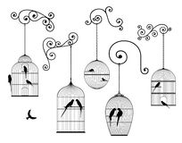 Vector set of outline, antique, hanging bird cages and domestic birds in black color. On white background stock illustration