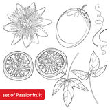 Vector set with outline Passion fruit or Maracuya. Half fruit, leaf and flower isolated on white background. Royalty Free Stock Photography