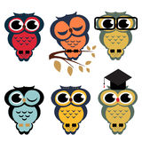 Vector set of owls. Cartoon Royalty Free Stock Images