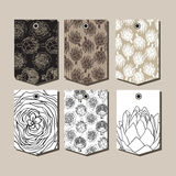 Vector set of packaging design templates with the artichoke symbol Royalty Free Stock Images