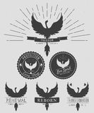 Vector set of phoenix symbol vintage  logos, emblems, silhouettes and design elements. Symbolic logos with textures. Vector set of phoenix symbol vintage  logos Royalty Free Stock Images