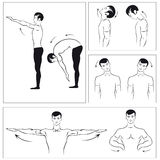Vector set of physical exercises to relax the spin Stock Photos