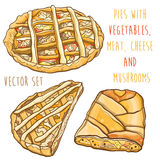 Vector set with pies with vegetables, meat, cheese and mushrooms Stock Images