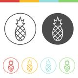 Pineapple icons vector. Vector set of pineapple icons in thin line style Royalty Free Stock Image