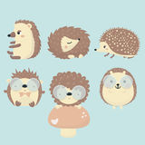Vector set of porcupine. Vector set of porcupine on blue background Royalty Free Stock Images