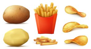 Vector set of potato snacks, french fries, chips. Vector 3d realistic set of potato snacks, tasty french fries in red box, raw vegetable and peeled, crispy and royalty free illustration