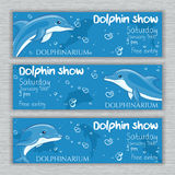 Vector set of printable dolphinarium banner with hand drawn cartoon dolphins and text Royalty Free Stock Photography