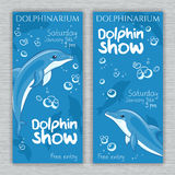 Vector set of printable dolphinarium banner with hand drawn cartoon dolphins and text. Can be used as a ticket design Stock Photos