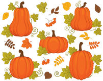 Vector Set with Pumpkins, Berries and Leaves. Vector Halloween and Thanksgiving Day. Pumpkin Vector Illustration. Vector set with pumpkin, berries and leaves Stock Photos