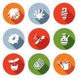 Vector Set of Rastaman Icons. Dreadlocks, Marijuana, Light, Smoking, Drug, Bong, Hydroponics, Money, Farm. Stock Image
