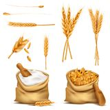 Vector realistic set cereals 3d icon Royalty Free Stock Photos