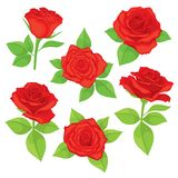 Vector set of realistic, detailed, isolated Rose buds in red color with green leaves on white background. Stock Photo