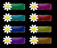 Vector set of rectangular buttons with the flower. Vector set of rectangular buttons with the flower on the left. Colors: green, turquoise, blue, purple, pink Stock Photo