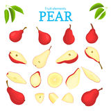 Vector set of red fruits. Pear fruit, whole, peeled, piece  half, slice, leaves, seed. Collection  delicious  pears Royalty Free Stock Photo