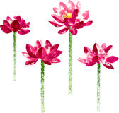 Vector set with red watercolor lotus Royalty Free Stock Images