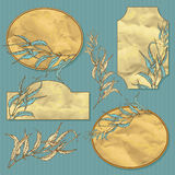 Vector set of retro vignette background with eucaliptus leaves Stock Image