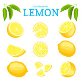 Vector set of ripe tropical yellow lemons fruits. Citrus fruit peeled piece of half slice. Collection of delicious lemon Stock Image